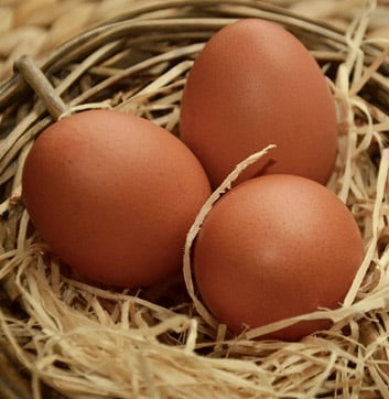 Now Featuring: Natural Chicken and Eggs from GoneStraw Farms