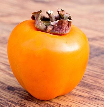 persimmon winter fruit