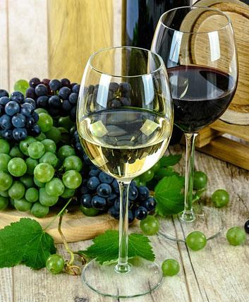 chardonnay summer wine